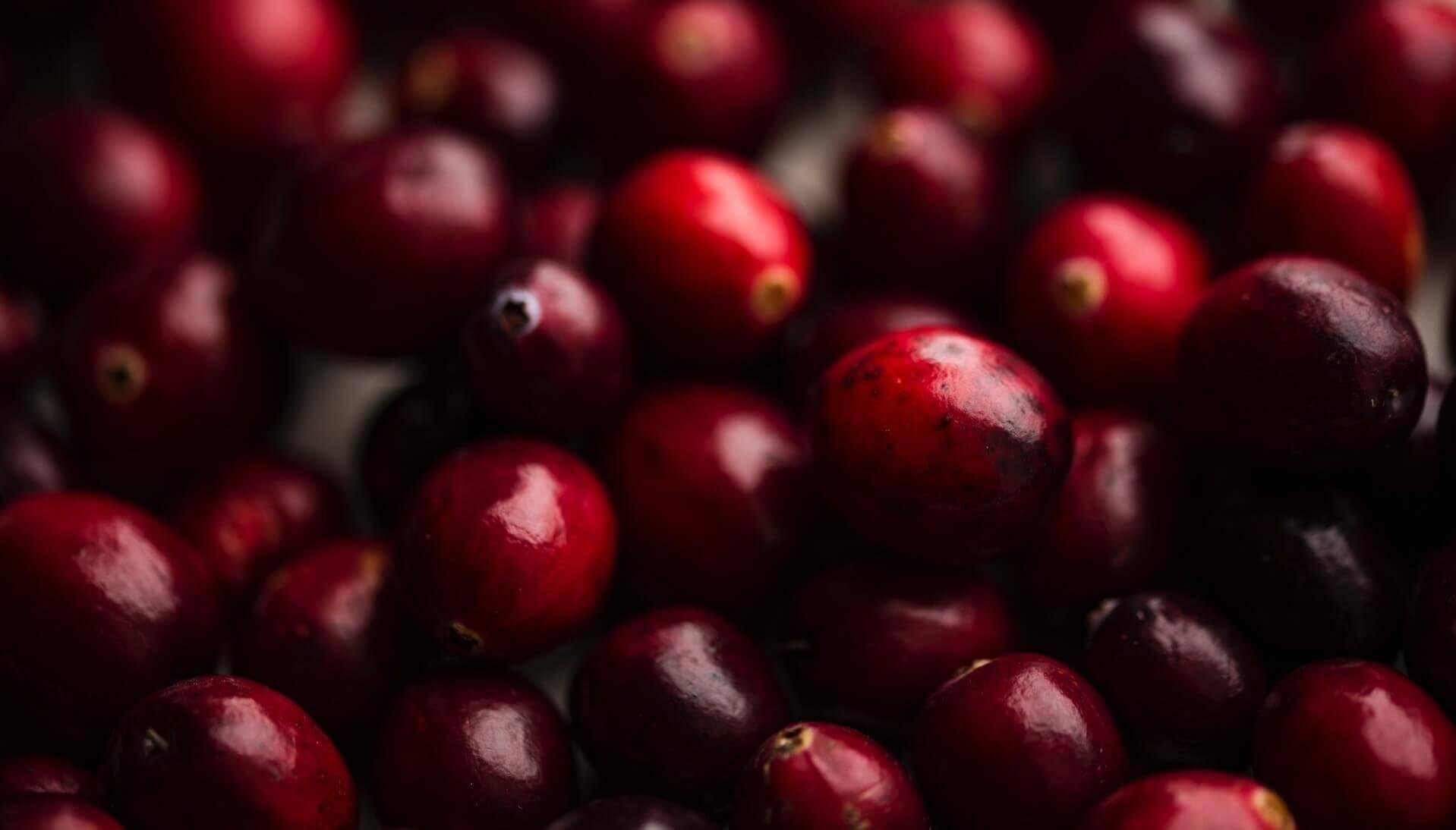 Cranberry gegen Blasenentzündung